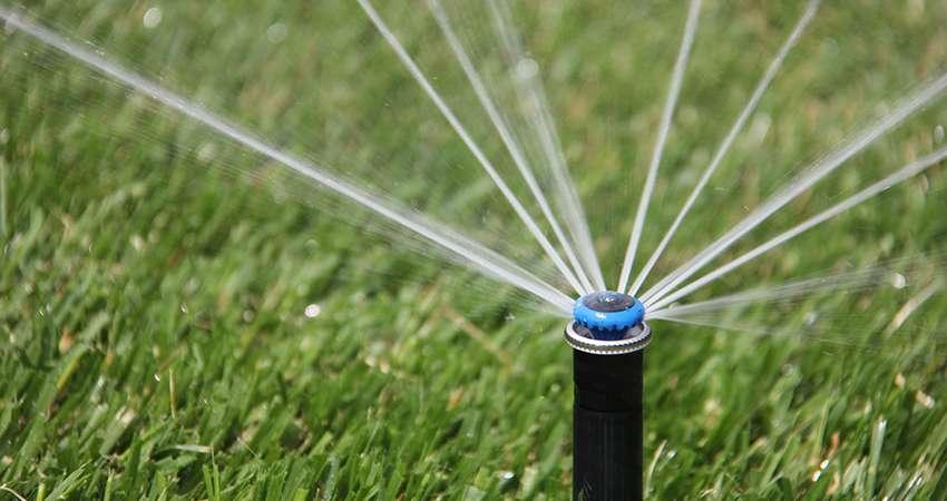 автоматический полив рулонного газона