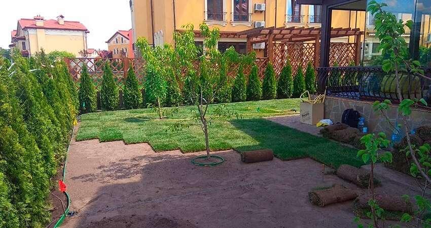 Укладка рулонного газона на небольшом участке