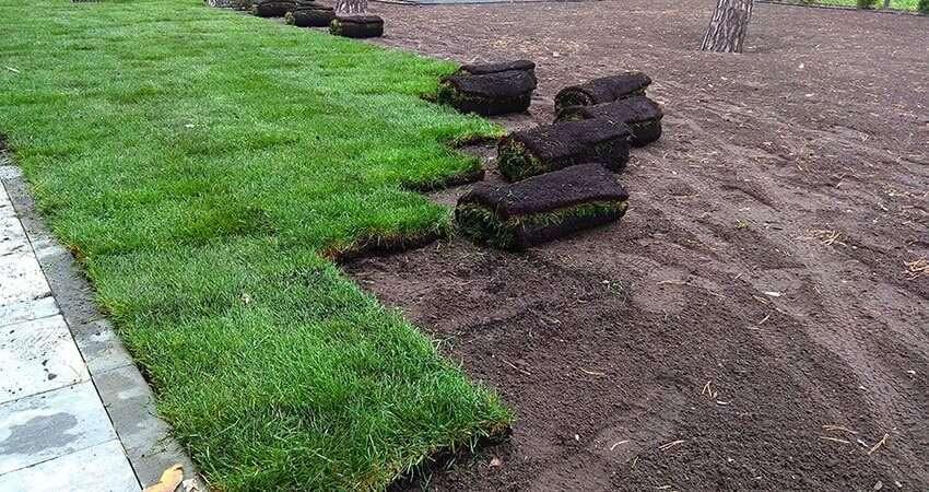 Монтаж рулонного газона на новом участке