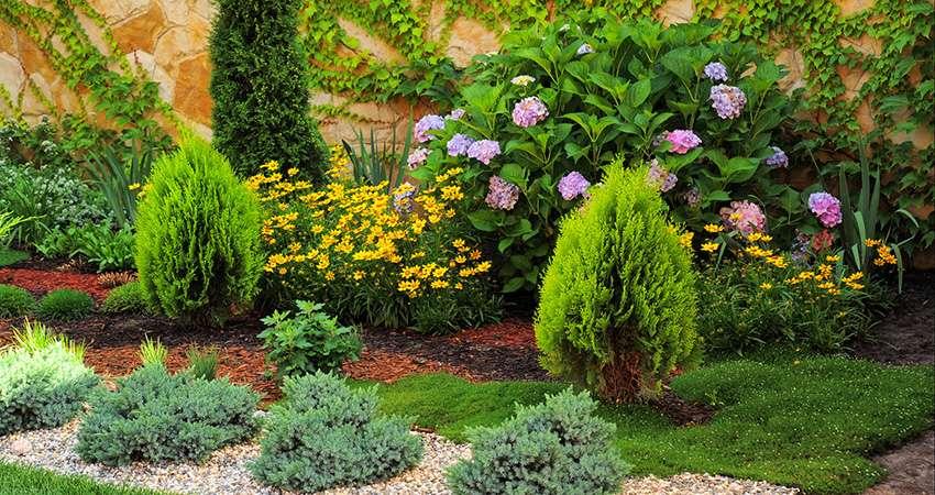 Клумба с хвойными и лиственными растениями