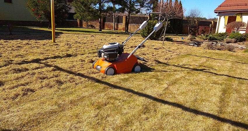 Весенняя скарификация газона